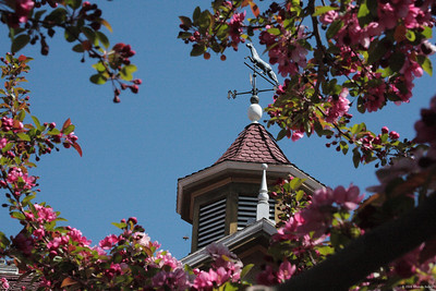 Weather vane at Winchester Mystery House