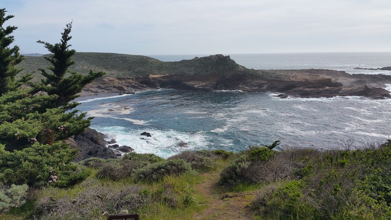 Perfect whale watching season at Point Lobos this time of the year.