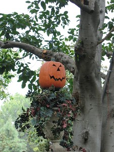 The Disneyland Haunted Mansion was decorated as Nightmare Before Christmas.