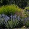 Sat Quivra Garden