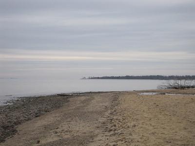 Calvert Cliffs 1/2/13