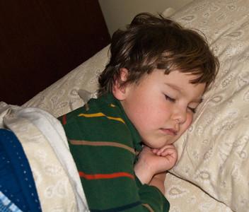 Ollie asleep 112509-5