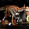 Royal Tyrrell Museum in Drumheller, AB.