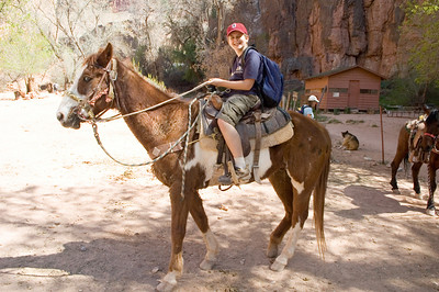 After landing in the village, we met our guide who set us up with horses for a ride down to Havasu falls.