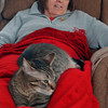 Carol & 'Bullet' relaxing. Something about that red afgan attracts Bullet everytime!
