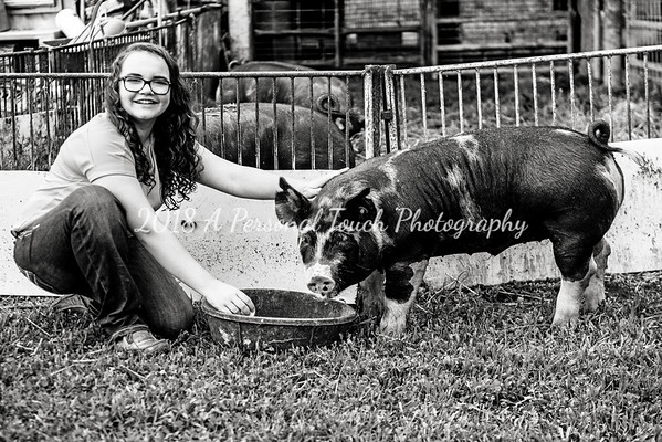 Carter and Kaylee and the pigs
