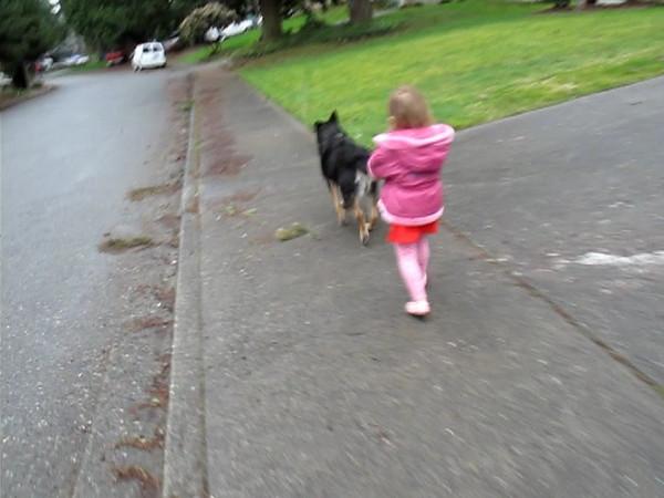 Buckley (90lbs) lets Sydney (30lbs) pretend to walk him.