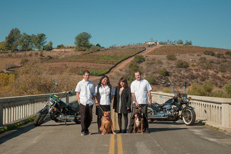 The Cassidy Crew shot at the Old Bonsall Bridge.