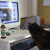 5-07-09<br /> <br /> I came home a little early today....<br /> <br /> This certainly explains a lot...not just how my cat Oreo* updates his facebook page, but where all my good beer goes...<br /> <br /> *Oreo Rogers, he needs facebook friends.<br /> <br /> 11-20-09 update:  facebook removed Oreo's facebook page.<br /> 2011 edit:  He's got another facebook page