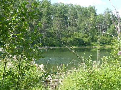 Pine Island Lake P1030155