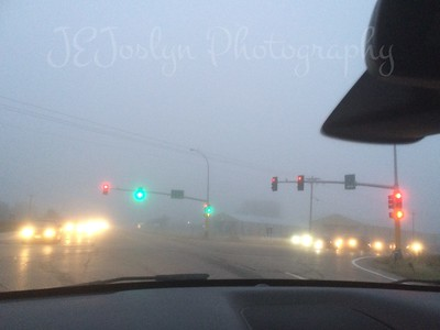 Foggy morning - just another trip to the country.
