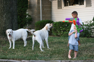 Edward & Aaron had so much fun with the water guns and dogs!