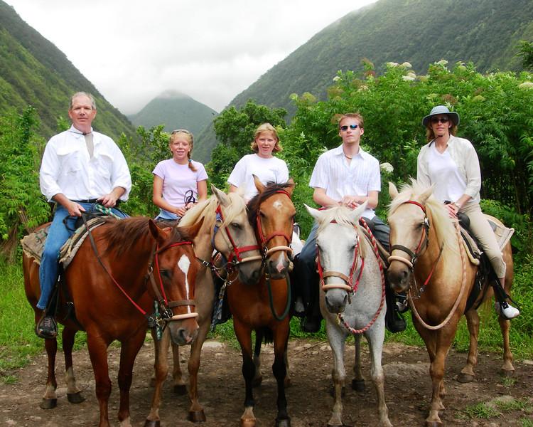 Horses0062