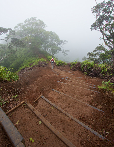 A misty ridge hike on Oahu.