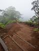 A misty ridge hike on Oahu.