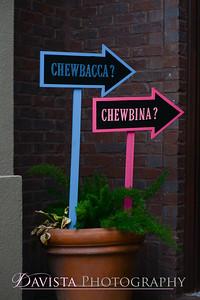 chewbina