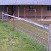 We're going to run a cross-fence from the post in the right foreground back to the side of the barn. It's going to give the chickens a roughly triangular area, and the coop will be under the roof. The frame in the picture is an old stancion we used for milking our cow, which the horses have nibbled on over the years (its next stop is the junkpile). We will scrape the gravel off the area and put in a few inches of sand for the chickens.