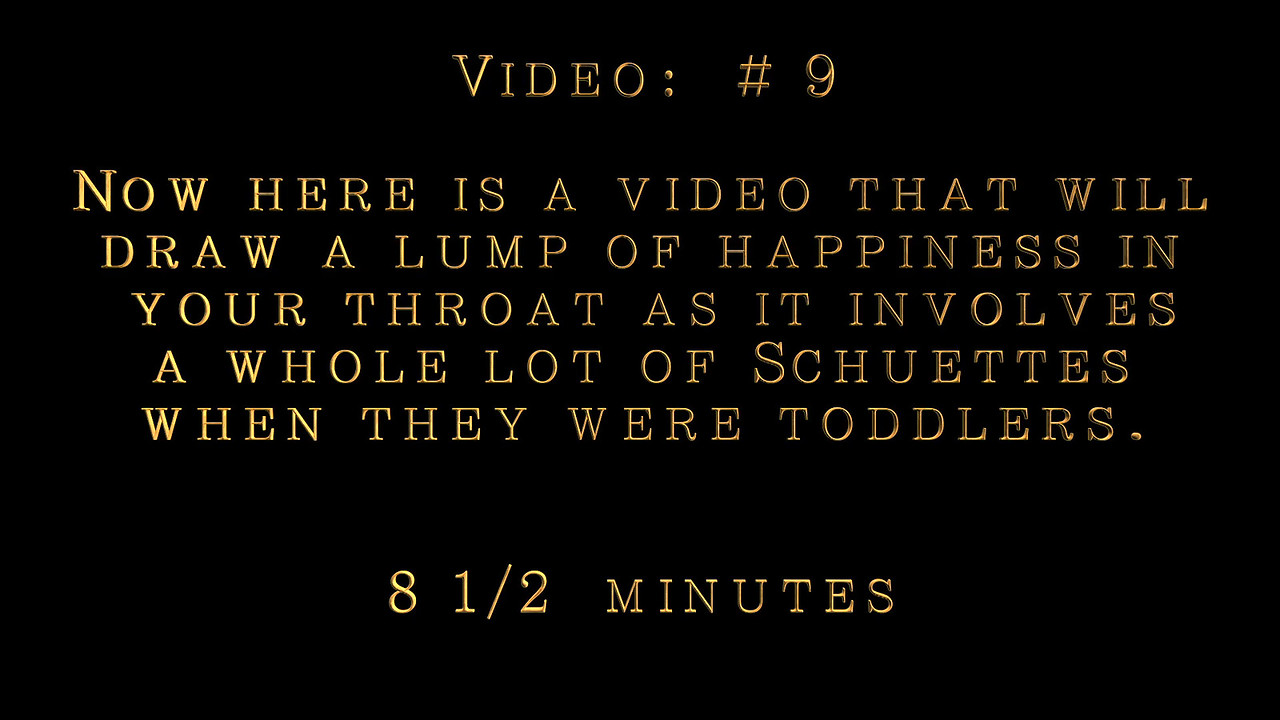 Video:  # 9~~Roger & Marilyn's toddler family, Video: 8 1/2 minutes