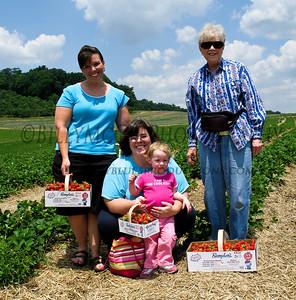 Picking Berries - 11 Jun 07