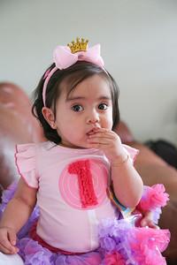 Camila 1st Bday-7681