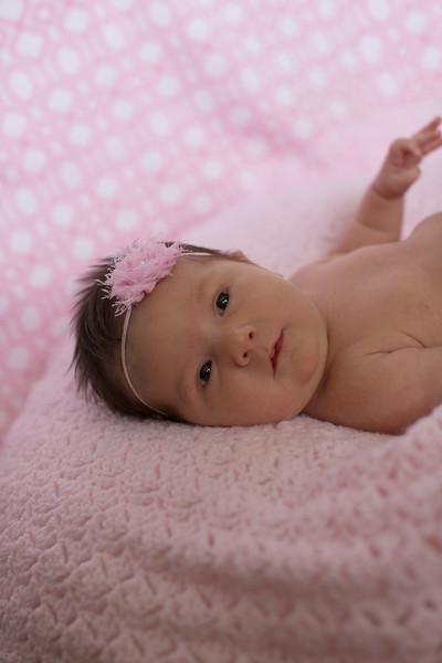 Emilia Roberts Newborns 4-26-15--15