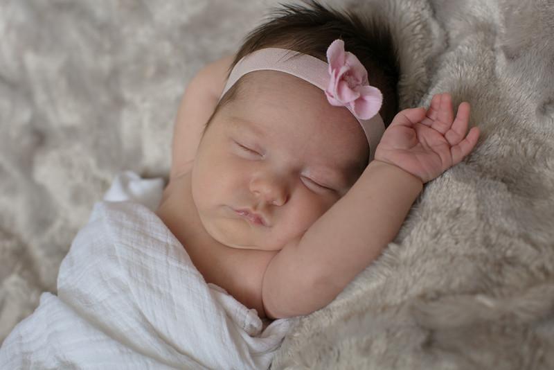 Emilia Roberts Newborns 4-26-15 b2--10