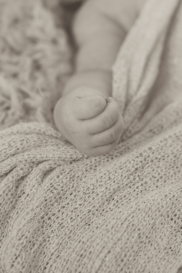 Emilia Roberts Newborns 4-26-15-0070
