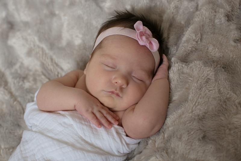 Emilia Roberts Newborns 4-26-15 b2--11