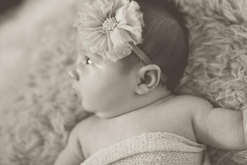Emilia Roberts Newborns 4-26-15-0074