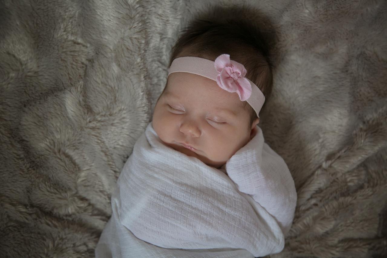 Emilia Roberts Newborns 4-26-15 b2--6