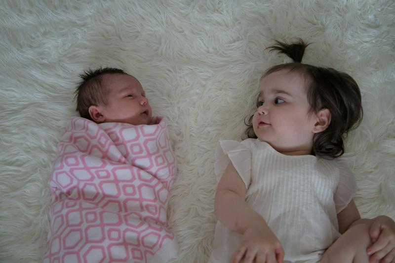 Emilia Roberts Newborns 4-26-15 b2--4