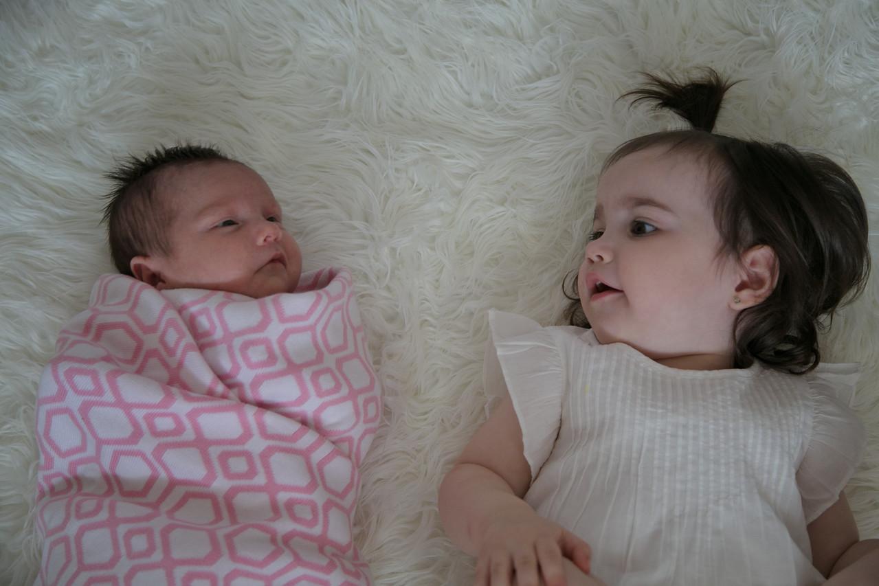 Emilia Roberts Newborns 4-26-15 b2--5