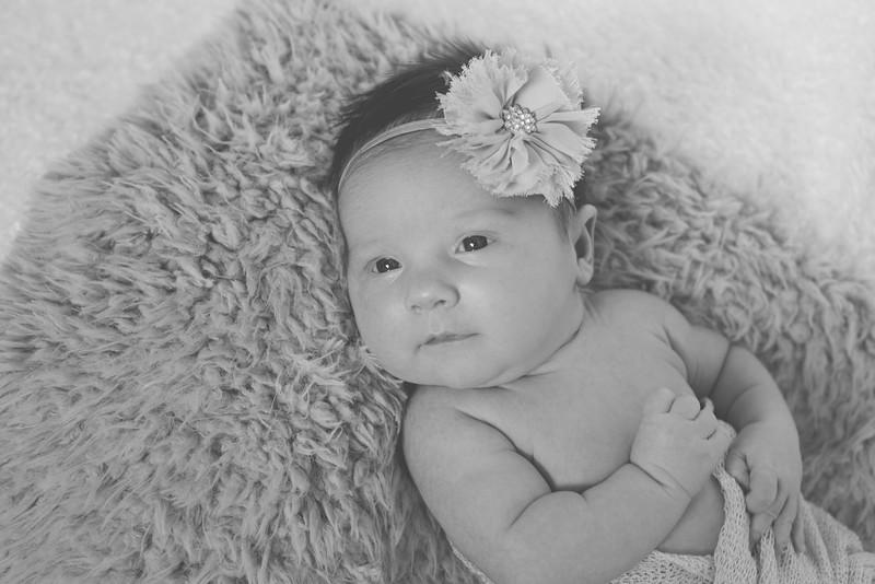 Emilia Roberts Newborns 4-26-15-2-2