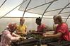 Lydia, Amira, Jill & Lauren planting seedlings