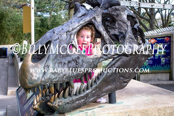 National Zoological Park - 02 Apr 2010