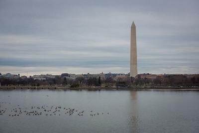 Washington DC December 2014-0265