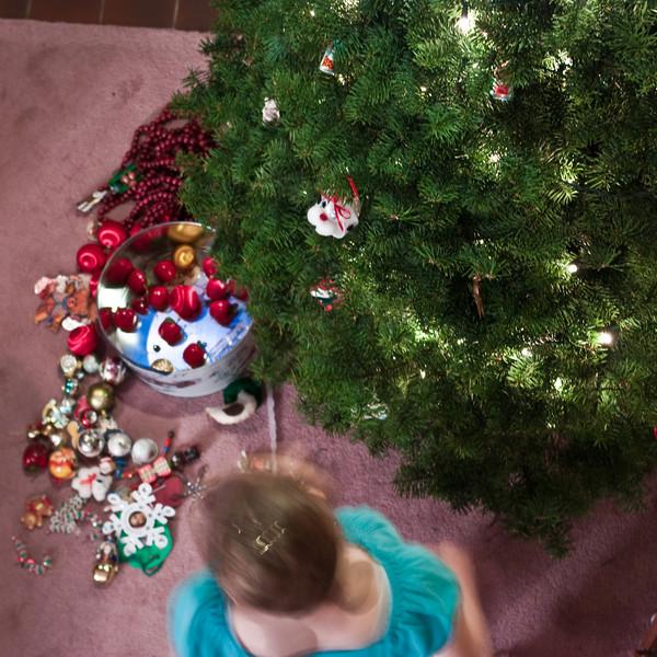 Christmas Tree Sunday (19 of 23)