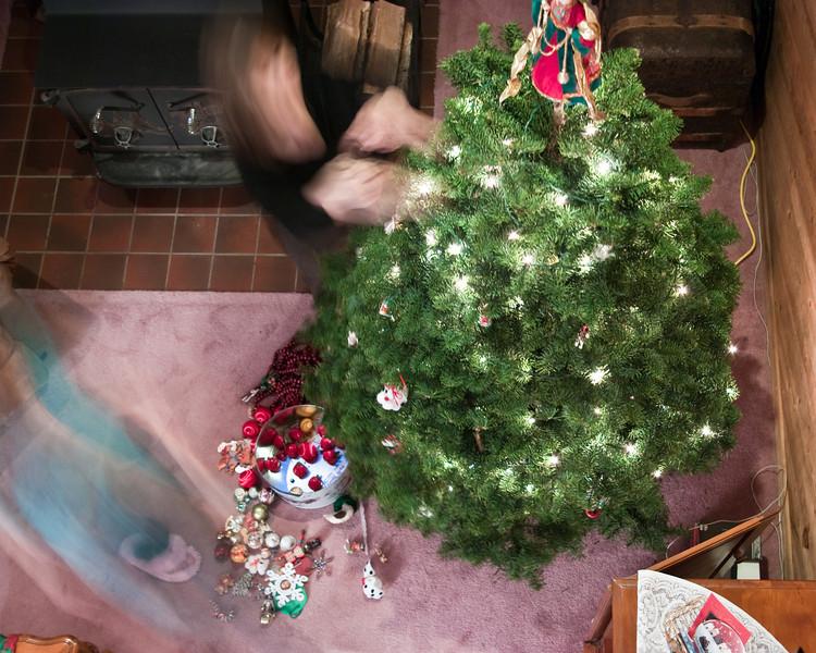 Christmas Tree Sunday (18 of 23)