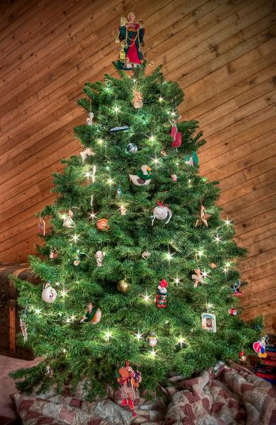 Christmas Tree Sunday (23 of 23)