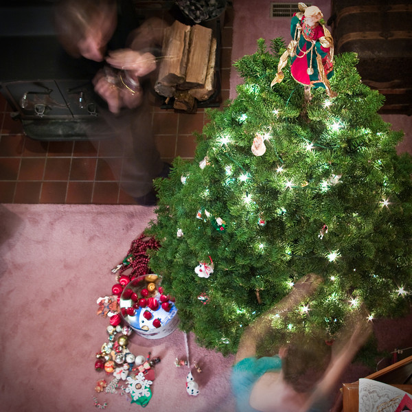 Christmas Tree Sunday (20 of 23)