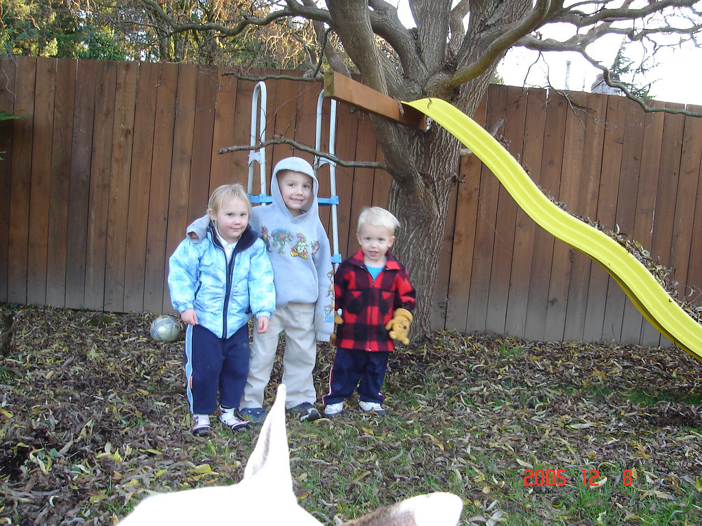 Lily 3, Ian 5, Elliot 2.  They had a lot of fun piling the leaves up and then sliding down the slide.