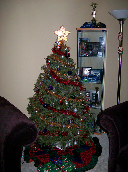 Our pretty tree!