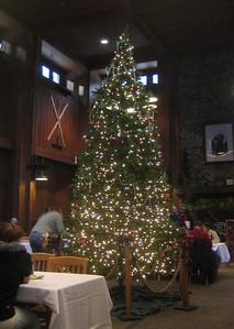 Christmas tree in Yosemite, December 28, 2007. See separate album of our Yosemite trip.