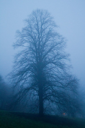 Bakewell in the mist
