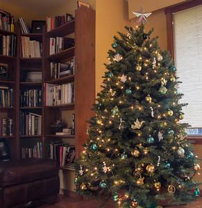 Lovely Noble fir tree
