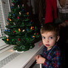 William inspects the Yates Christmas tree