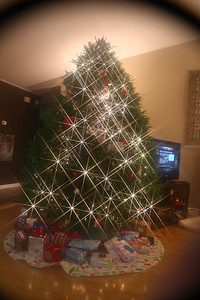 Leanne's tree