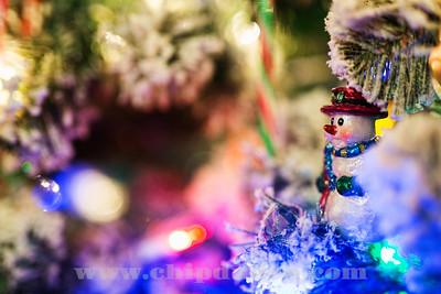 Ornament_2O7A6441