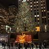 2014 Rockefeller Center Christmas Tree