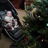 Fiona likes grandpa's Christmas Tree!